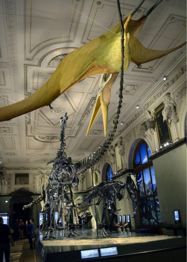 Museum histoire naturelle Vienne Wien
