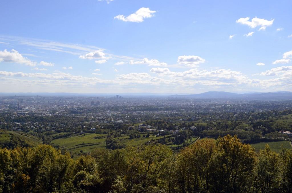 colline Wien Vienne